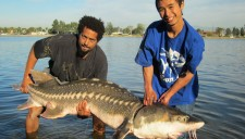 Santa Ana River Lakes - Patrick Pham - Hunnington Beach - 100+ pound sturgeon - 12-10-11