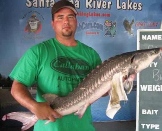 Santa ana river lakes shaun stott buena park 9 5 10 for Santa ana river lakes fishing tips