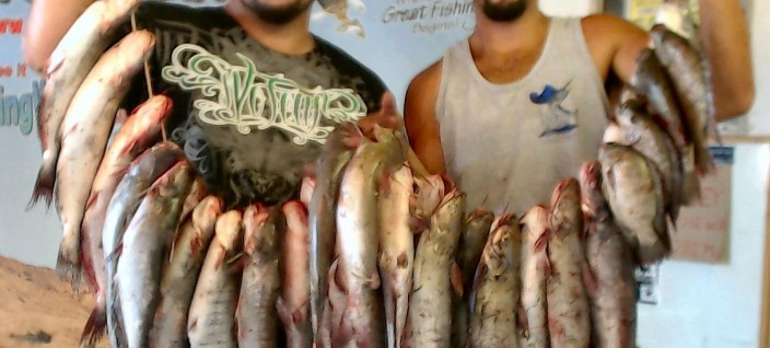Current fish report 9 19 12 for Matthews fishing report