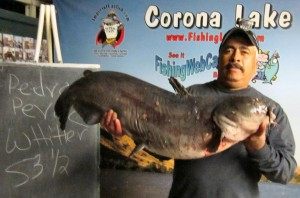1-9-13 - Pedro P. 53.5 lbs cat !!