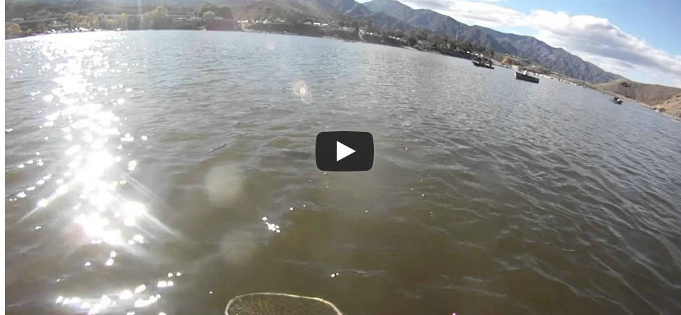 Fishing video stars float tubes for Corona lake fishing