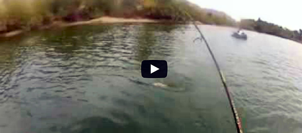 Fishing video stars float tubes page 2 for Corona lake fishing