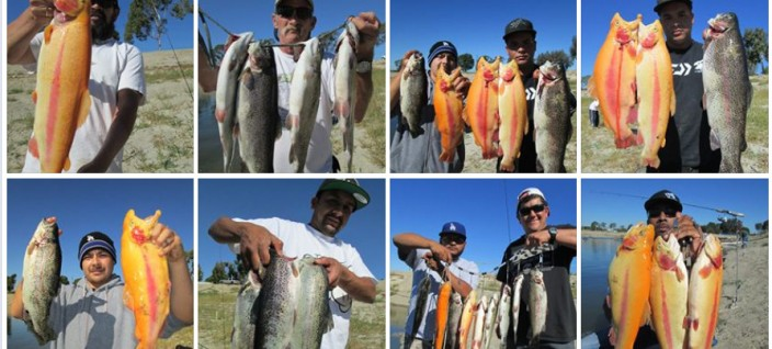 Tips for successful trout fishing for Matthews fishing report