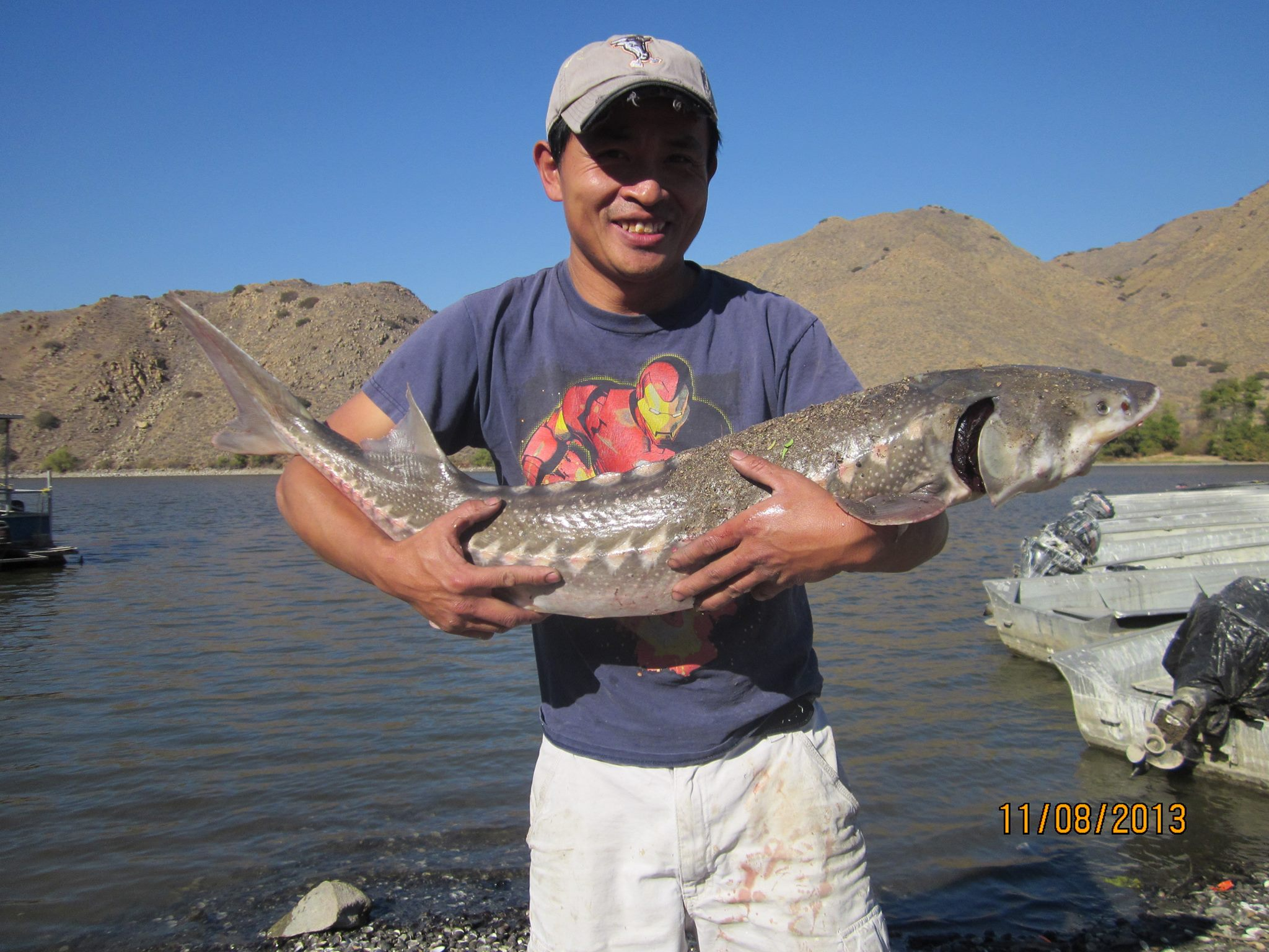 Current fish report 11 13 13 for Corona lake fishing