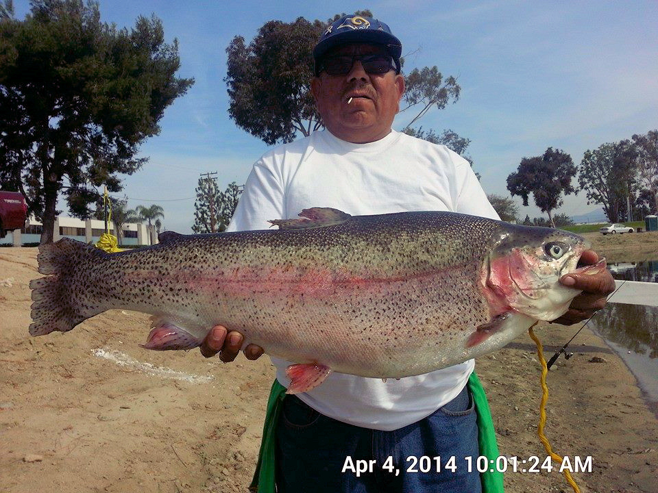 Current fish report 4 8 14 for Lopez lake fishing report
