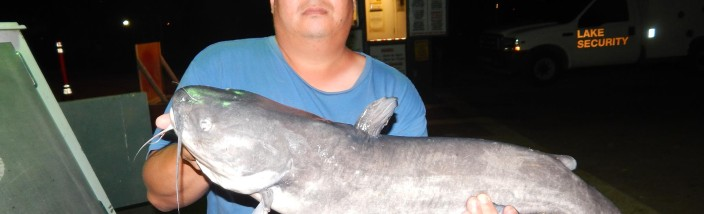 Jason Cho of Anaheim caught and released a 13 pound 8 ounce catfish using shrimp  at the boat dock in the Big Lake - SARL