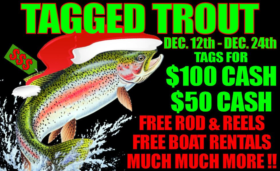 TAGGED TROUT CHRISTMAS SPECIAL Dec. 12th – Dec. 24th