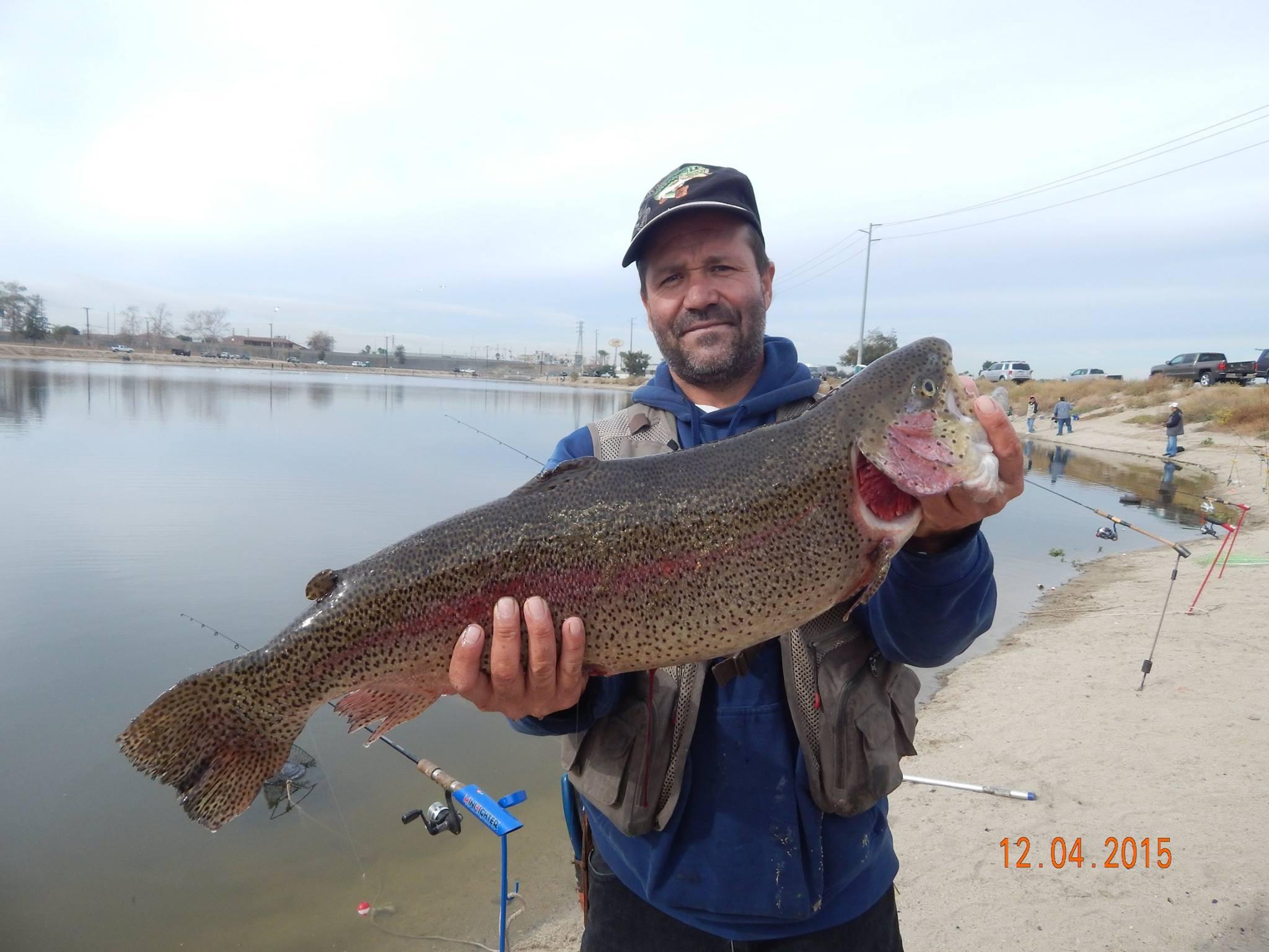Fishing reports page 8 for Santa ana river lakes fishing tips