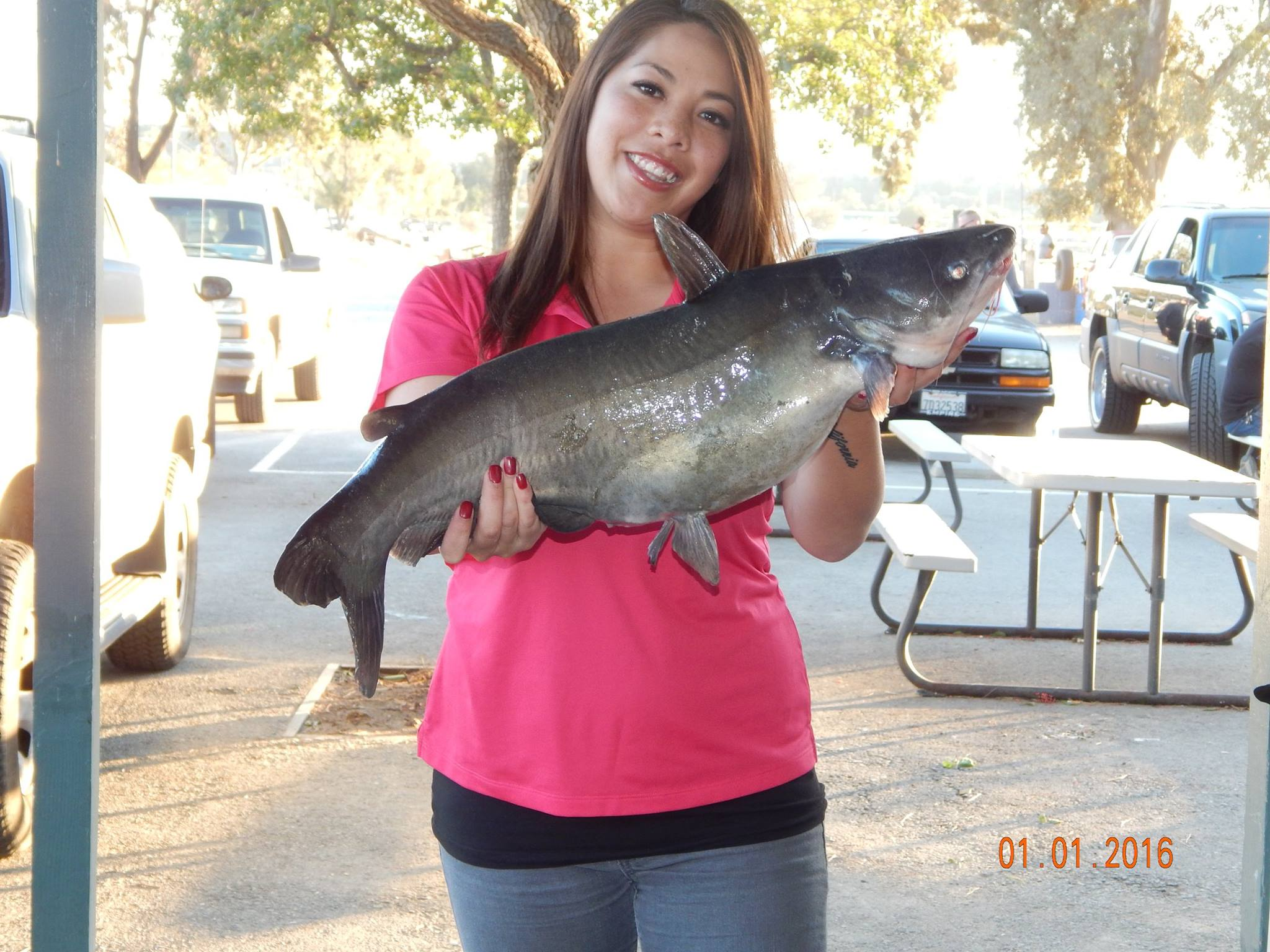 Current fish report 1 5 16 for How to fish for catfish in a lake