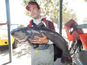 Frank M with 22 pound catfish at SARL