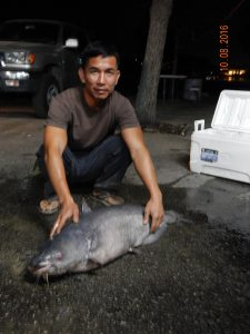 cho-vo-with-50-pound-catfish-caught-released-at-sarl